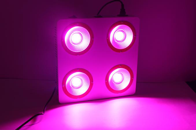 4x200w COB led grow lights