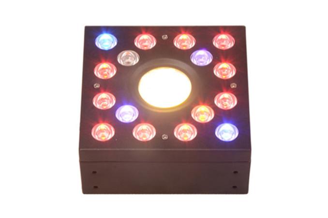 DIY 100W COB +leds grow lights
