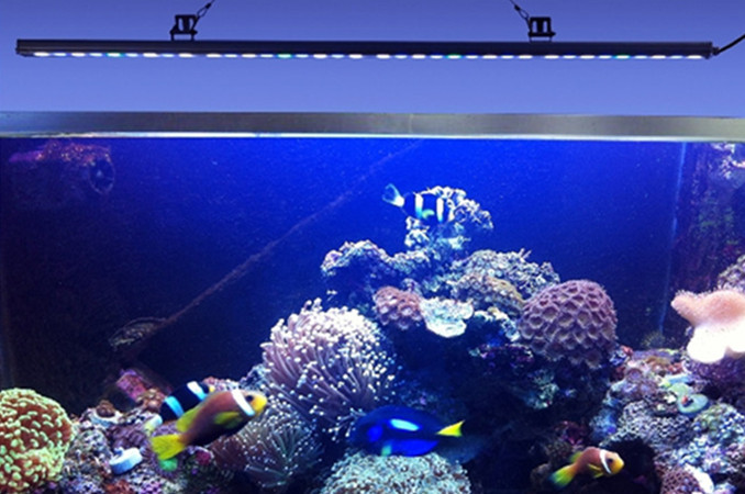 55cm 85cm 115cm Led Bar Aquarium Lights