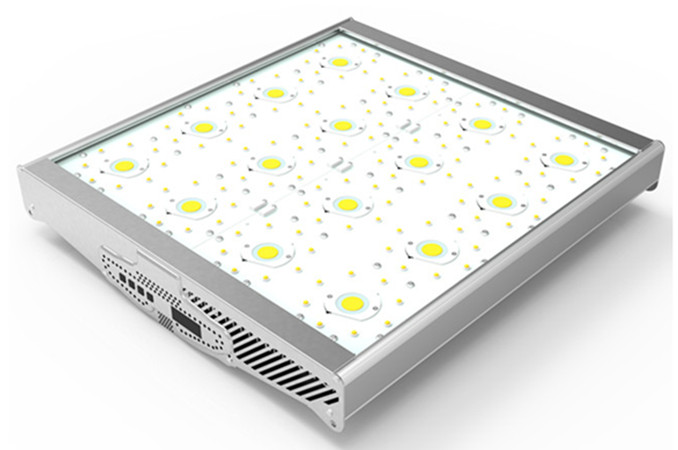 1000W COB+3w leds grow lights
