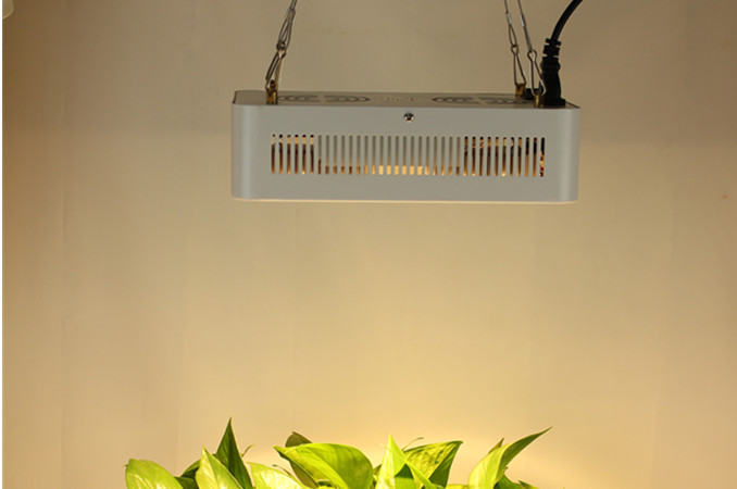200w-1800w CREE CXB3070 full spectrum COB led grow light