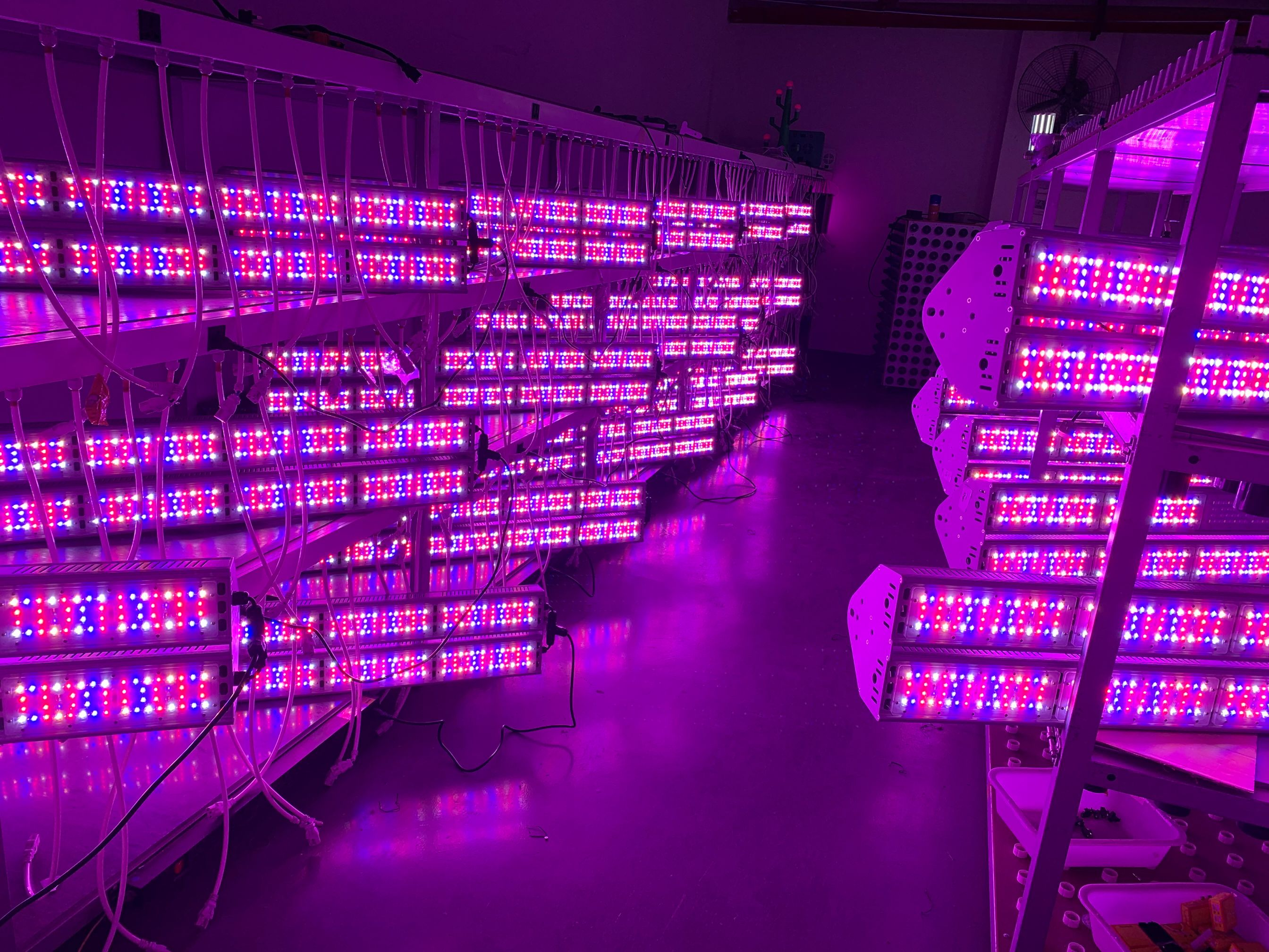 2000w led grow lights with full spectrum