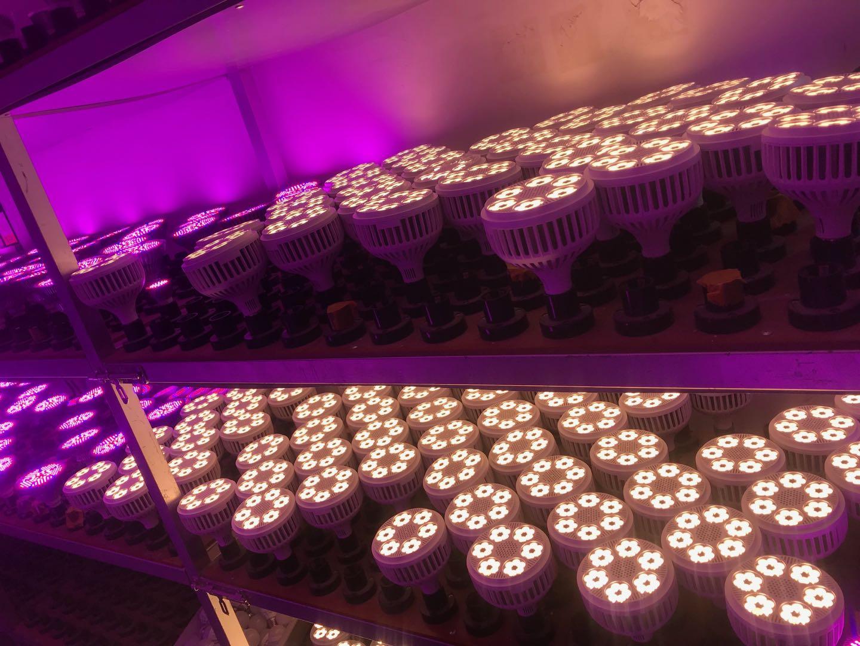 108w E27 Spot led grow lights