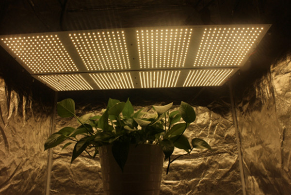 samsung panel led grow lights with full spectrum