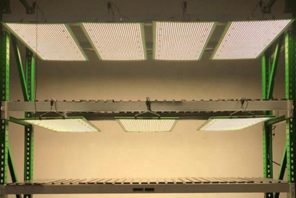 Samsung panel led grow lights with meanwell driver