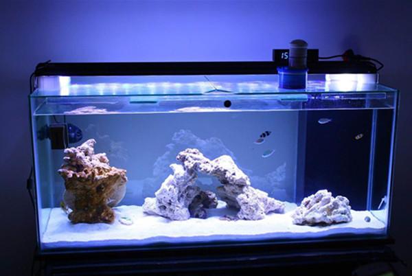 Led Aquarium lights for fish tanks