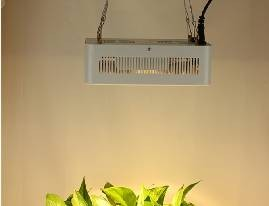 What Are The Benefits of Using Plant Growth Lights in Greenhouses?