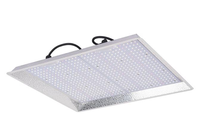 manufacturer of led grow lights for indoor plants